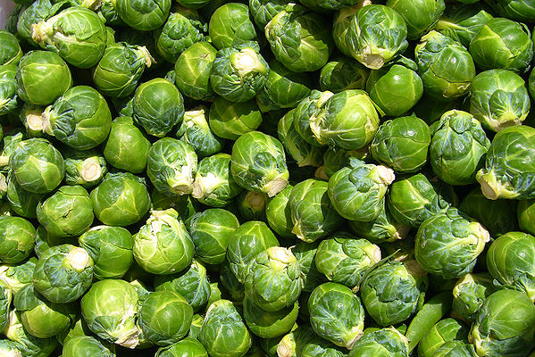 Brussels_sprout_